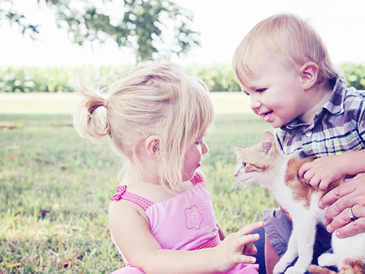 Why a Pet Could Be Great for Your Kids