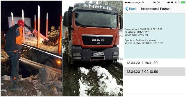 Camionul care a rupt podețul de pe DJ 174E transporta bușteni ilegal. Polițiștii s-au făcut că nu văd