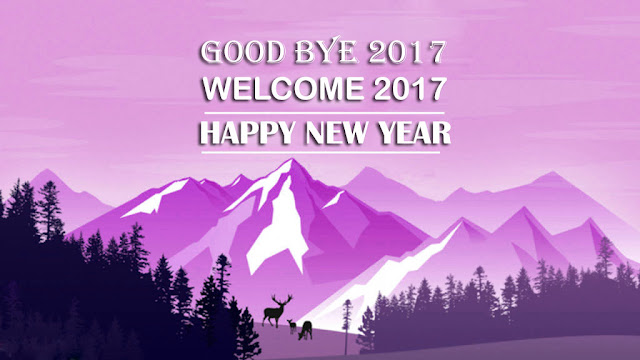 Good bye 2017 new year images