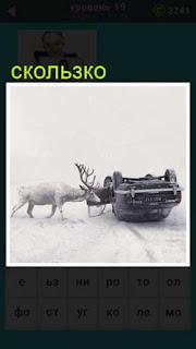 на скользкой дороге к верх ногами лежит машина и олень пытается её перевернуть