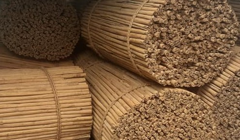 Ceylon Cinnamon for a Super Brain