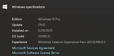 Windows 11 Pro Insider Preview Update Juni 2021