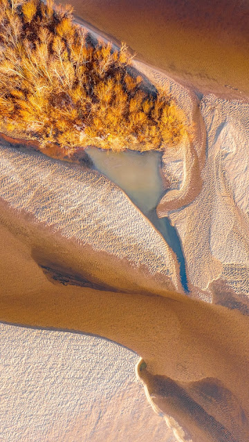 Island, Aerial view, River, Sand, Trees