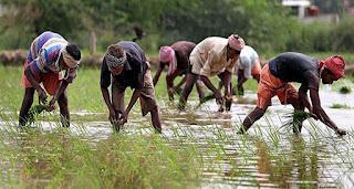 bihar-farmer-power-doner