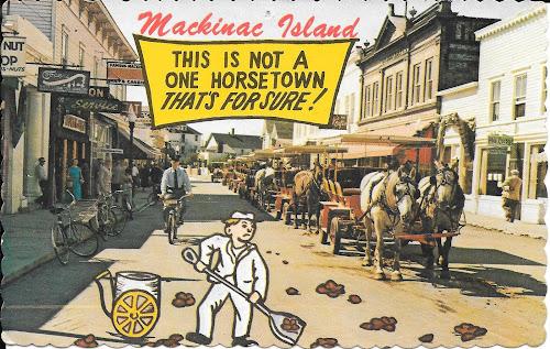 Mackinaw Island Horses