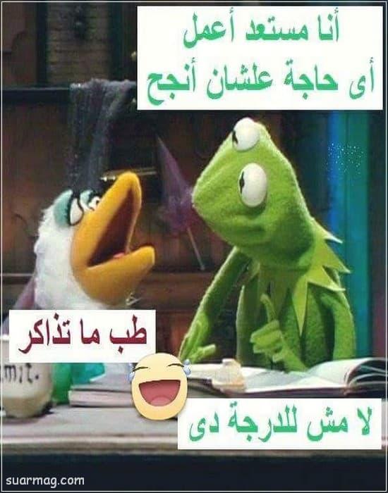 حالات واتس مضحكه مصريه 10   Egyptian funny WhatsApp status 10