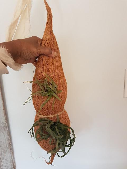 coconut husk plant hanger