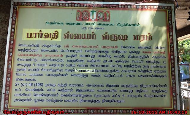 Kusalavapuri Chennai Temple