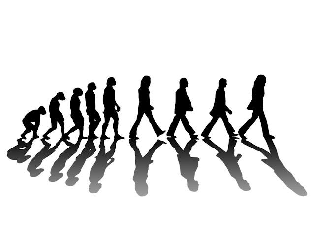 Bukti Evolusi Manusia
