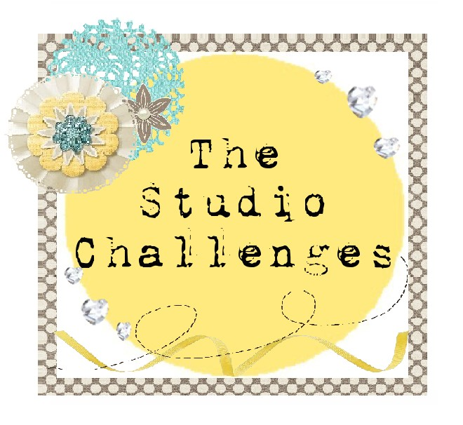 I won at The Studio Challenges!