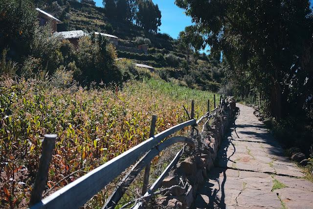 Fujifilm X70 Peru Lake Titicaca