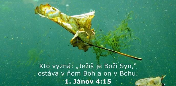 """Kto vyzná: """"Ježiš je Boží Syn,"""" ostáva v ňom Boh a on v Bohu."""