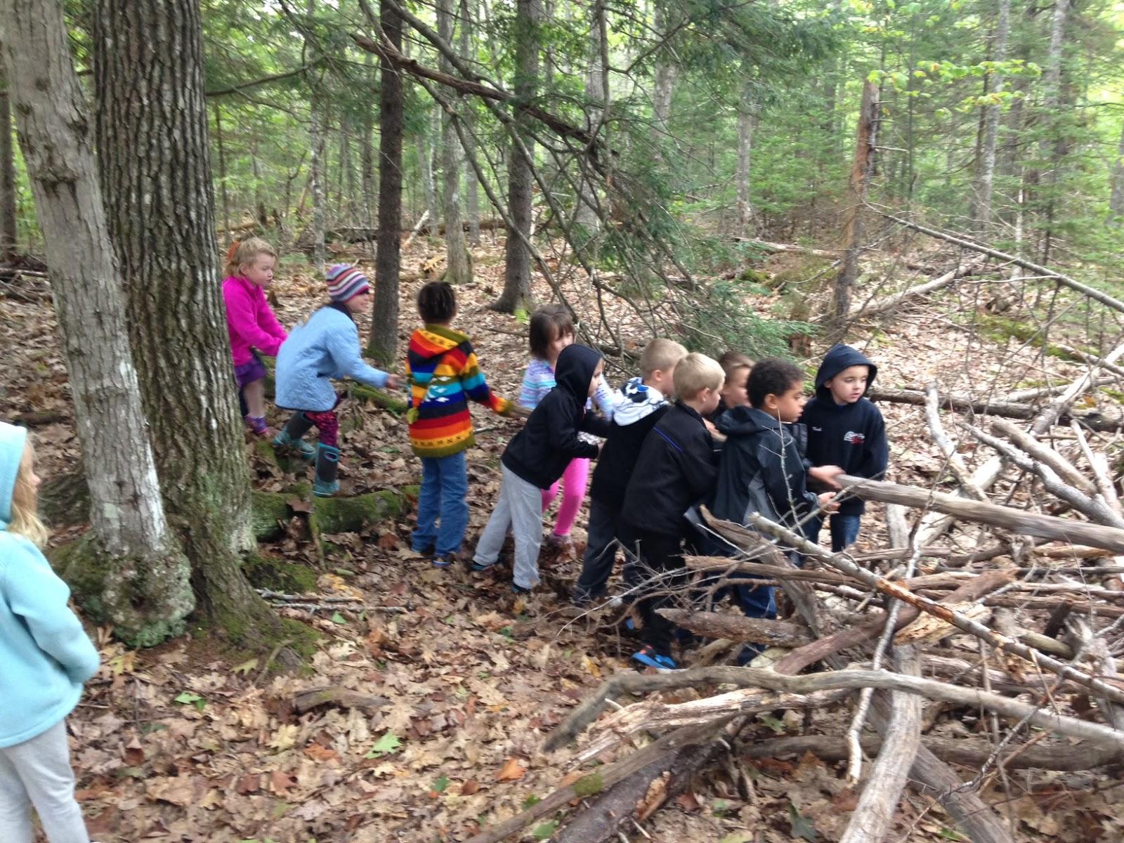 Life In The Dedham Kindergarten Fun Forest Friday