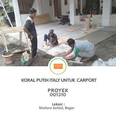 proyek pemasangan koral sikat untuk carport
