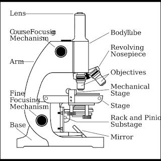 Bagian-bagian Mikroskop Cahaya, Lengkap Beserta Penjelasannya