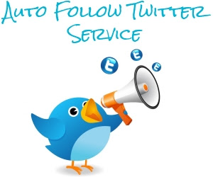 Twitter Service to Increase Twitter Followers