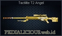 Tactilite T2 Angel