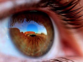 حقائق عن الانسان Eye-muscles