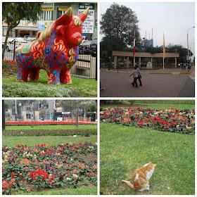 Parque Kennedy e os gatos, Lima, Peru