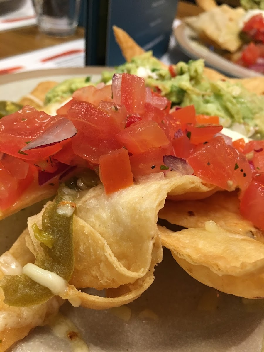 Bodega Cantina review Mexican food Leicester St Martins Midlands