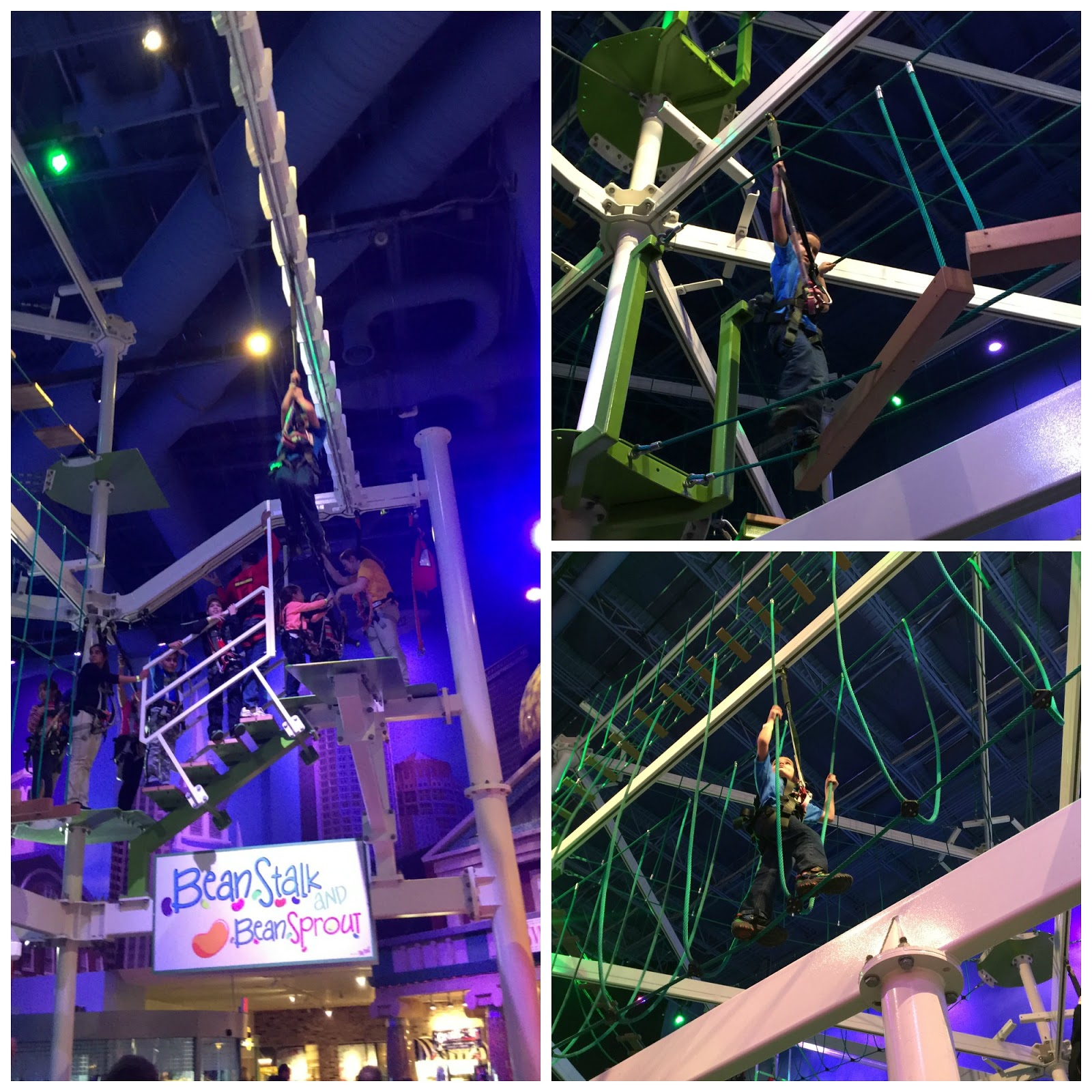 Aidan Made Circles The Entire Time To Get To The Zip Line, He Couldnu0027t Get  Enough Of The U201chuge Swingu201d