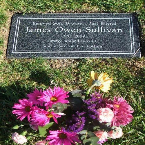 "Dedy Sullivan: Kematian James Owen Sullivan "" The Rev"