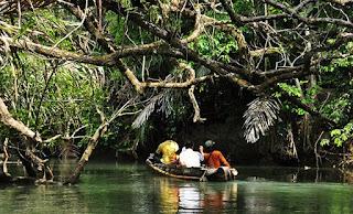 http://www.teluklove.com/2017/03/pesona-keindahan-wisata-sungai-cigenter.html