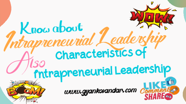 Intrapreneurial Leadership: Concept or Definition and Characteristics