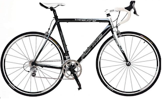 Stolen Bicycle - Forme Vitesse