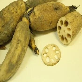 कमळकंद, lotus stem vegetables name in Marathi