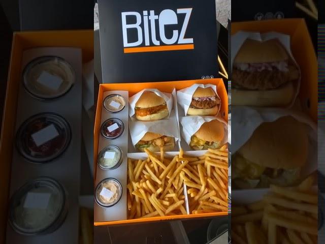 أسعار منيو ورقم وعنوان فروع مطعم بايتس برجر Bites Burger