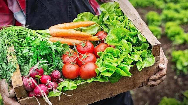 Chegaram para ficar: o crescimento dos produtos orgânicos