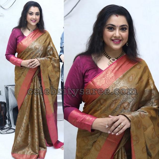 Meena Sagar Brown Traditional Saree
