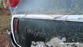 """Caprice Estate"" emblem on quarter panel of 1974 wagon."