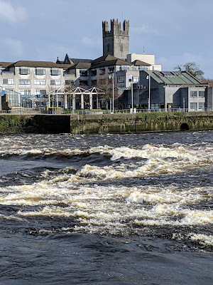What to see in Limerick: The River Shannon and St. Mary's Cathedral