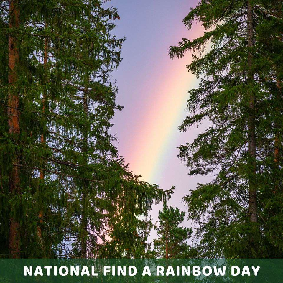 National Find a Rainbow Day Wishes Awesome Images, Pictures, Photos, Wallpapers