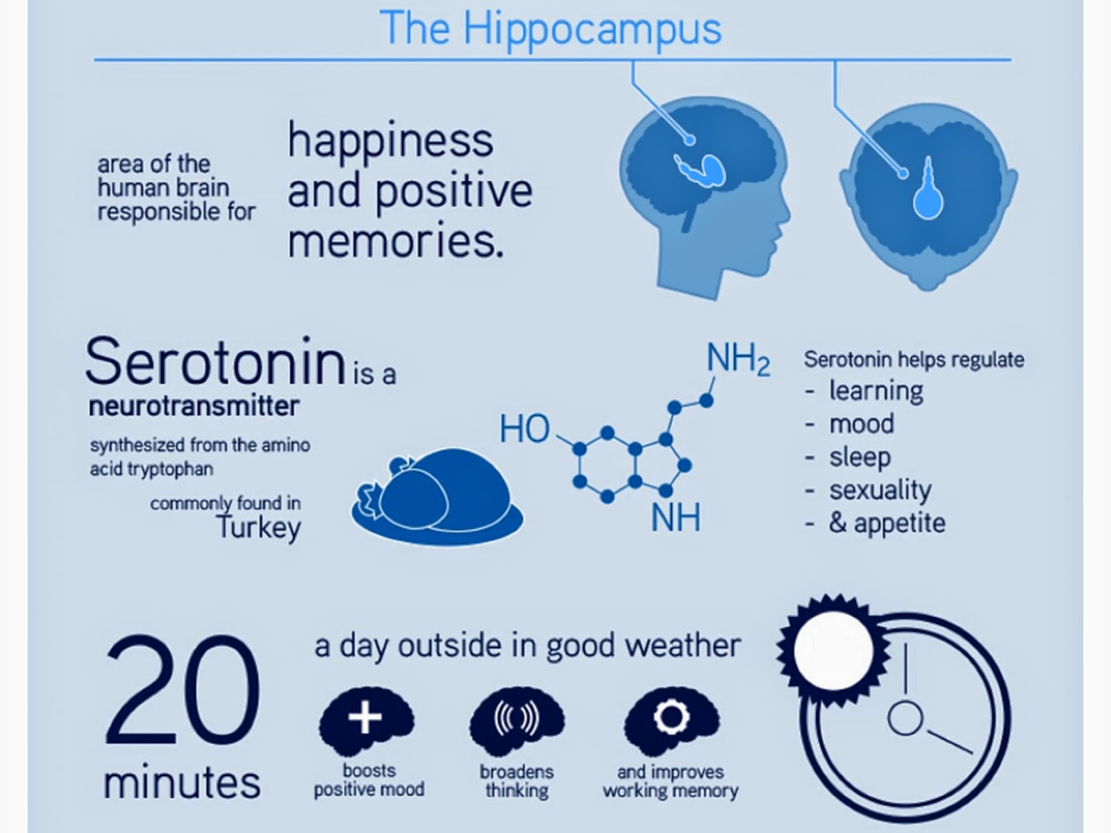 Facts about happiness 7