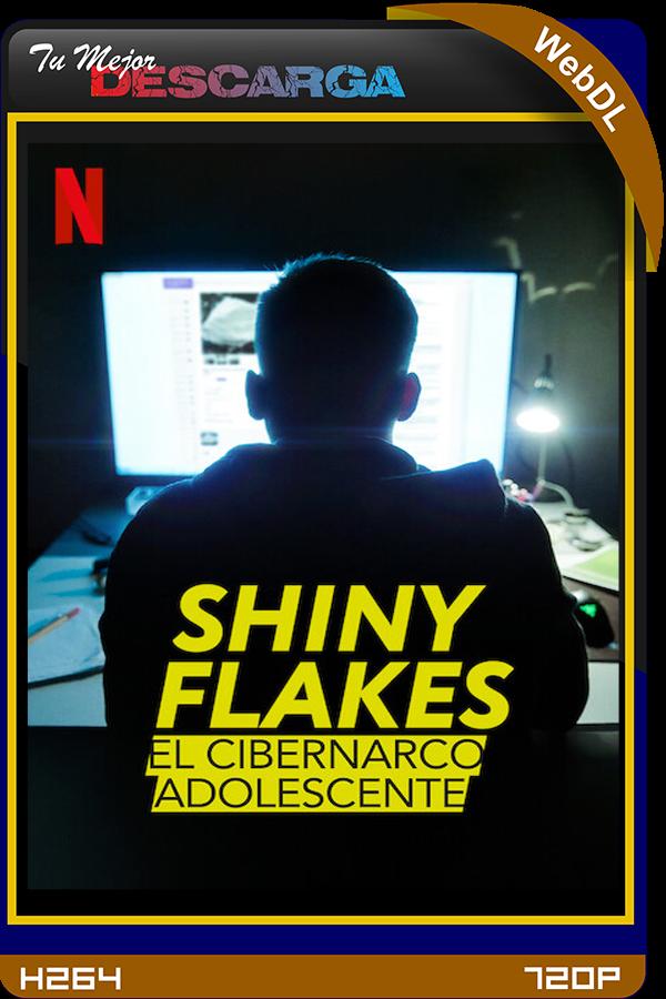 Shiny Flakes