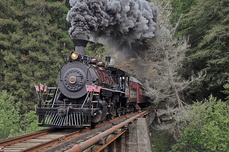 Image Result For Th Skunk Train