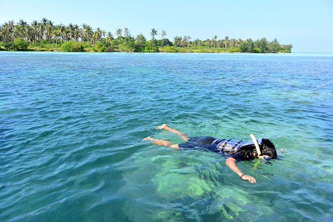 Snorkeling di Perairan Karimunjawa