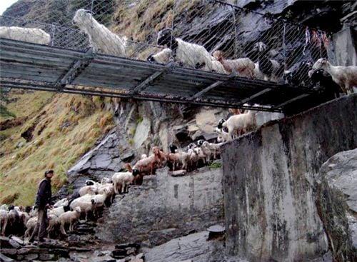10 cây cầu treo sợ nhất thế giới 9