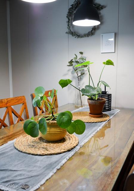 kirppis kirpputori kirppislöytö koti boheemi skandinaavinen persoonallinen kierrätys viherkasvit