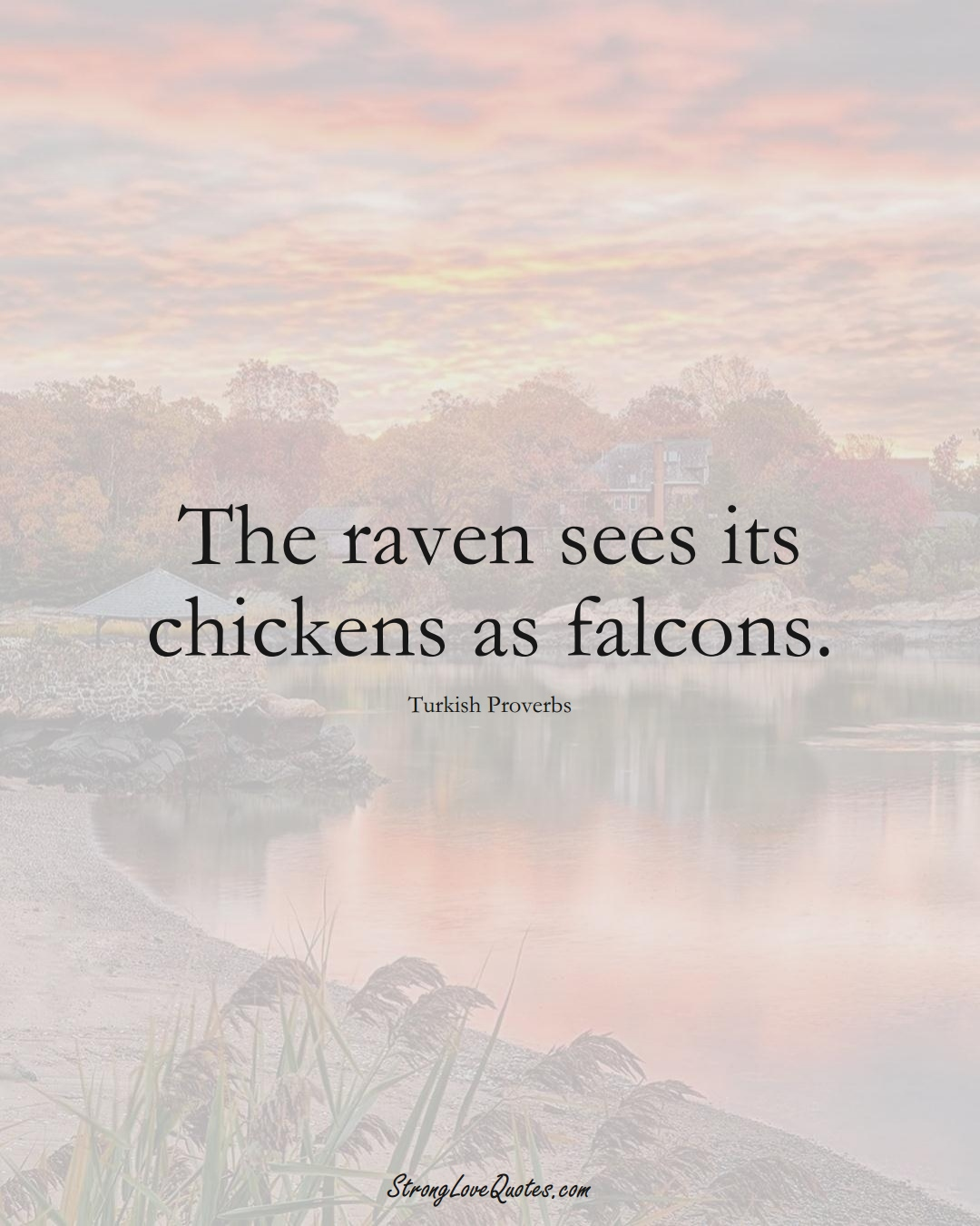 The raven sees its chickens as falcons. (Turkish Sayings);  #MiddleEasternSayings