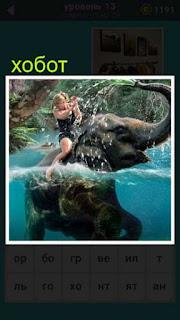 слон с хоботом находится в воде а сверху сидит человек управляет животным
