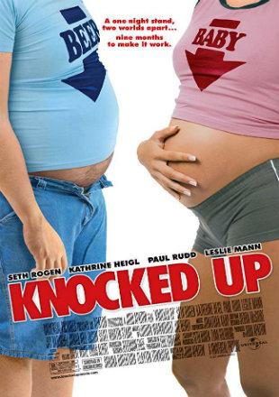 Knocked Up 2007 Dual Audio Hindi 350MB BluRay 480p x264 ESubs