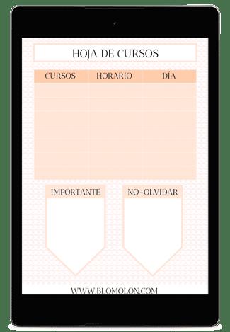 HOJA DE CURSOS 4