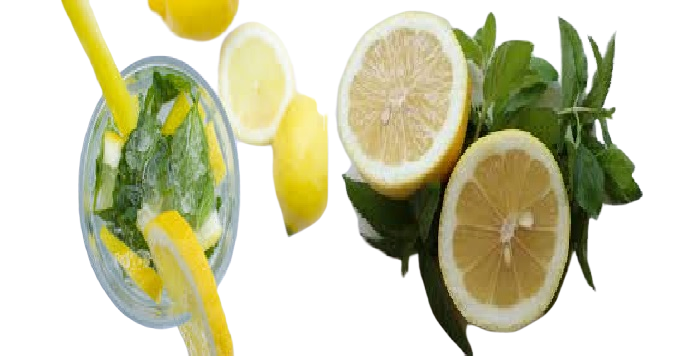 Increase your energy, lose weight, and reduce the evil of sugar Lemon and mint slices sugar Diet Inflammatory bowel diseases Intestinal bacteria immunity Lemon slices mint,lemon,lemonade KEYWORD, OVERALL, COMPETITION, VOLUME mint, Upgrade to Pro for access, Upgrade to Pro for access, Upgrade to Pro for access lemon, Upgrade to Pro for access, Upgrade to Pro for access, Upgrade to Pro for access lemonade, Upgrade to Pro for access, Upgrade to Pro for access, Upgrade to Pro for access
