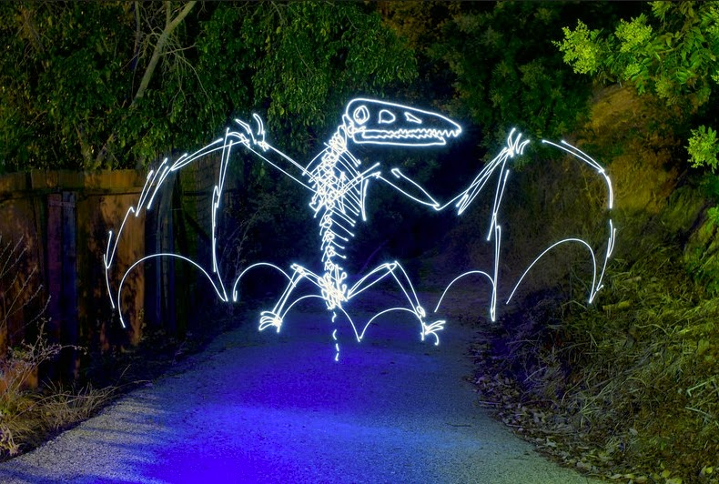 20-Pterodactyl-Darren-Pearson-Dinosaurs-Palaeontology-Skeletons-and-Angels-in-Light-Paintings-www-designstack-co