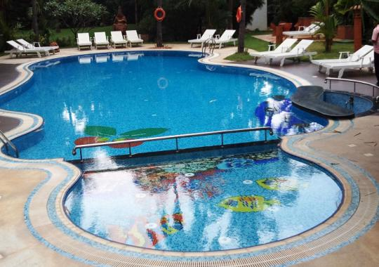 Swimming pools designs images plans for kerala homes for Pool design company radom