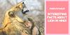 शेर से जुड़े 35 रोचक तथ्य - 35 Facts About Lion In Hindi